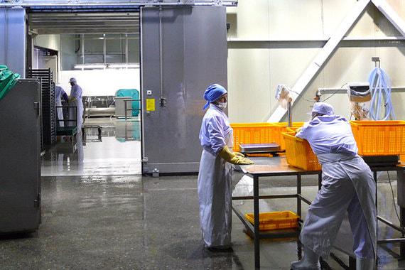 Инвесторы в рыбные заводы не получили квот от государства